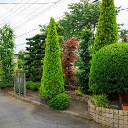 植える場所と生長を見越した樹木選定がポイント/展示場より